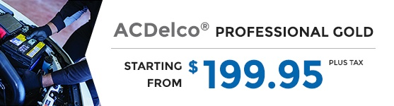 ACDelco AdVantage Professional Gold