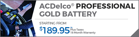 ACDelco Professional Gold Battery